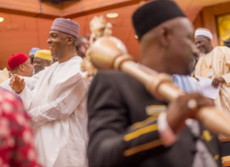 Nigerian senate proposes 2-year jail term for users of abusive statements