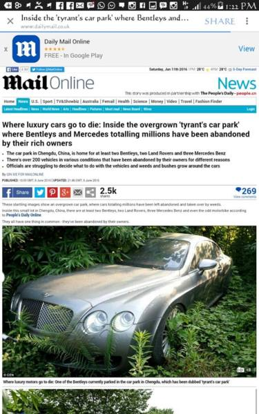 ©Daily Mail Bush Of Cars -5